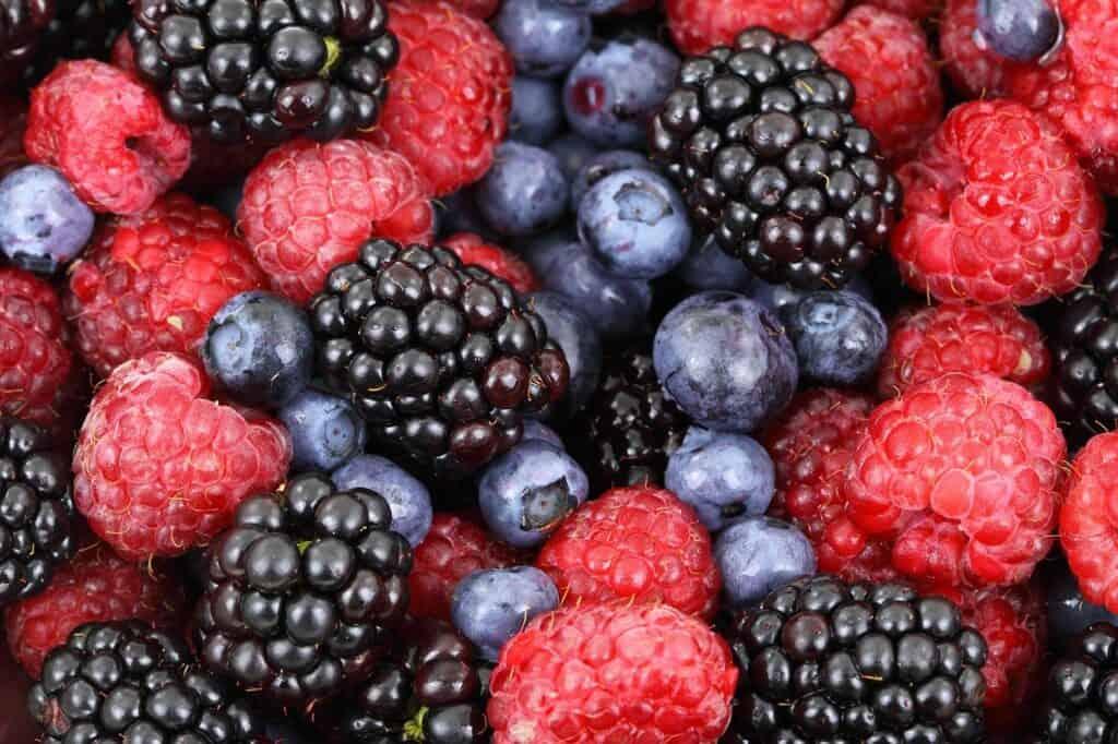 berries superfood