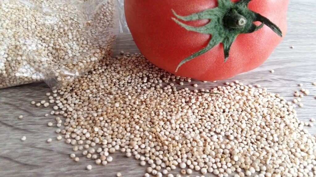 quinoa grains vegan